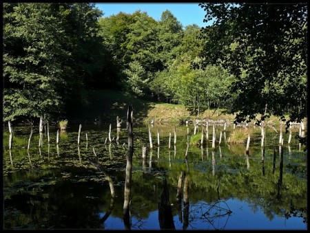 Bakonyi Gyilkos-tó 19,8 km