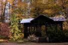 zirci-arboretum-13.jpg