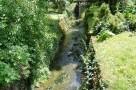 zirci-arboretum-14.jpg