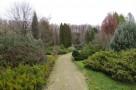 zirci-arboretum-20.jpg