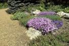 zirci-arboretum-22.jpg