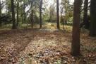 zirci-arboretum-24.jpg