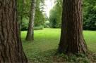 zirci-arboretum-25.jpg