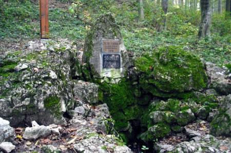 Zoltay-forrás 8,6 km erdei túra